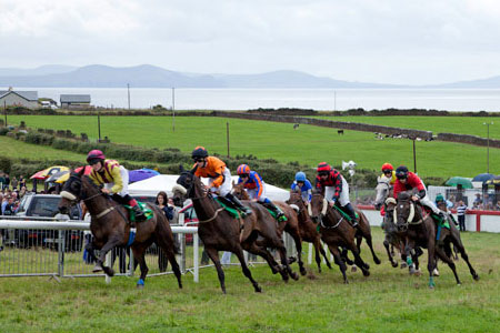 Dingle Races